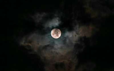 Full Moon – General Election 2019